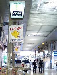 Miyukidori