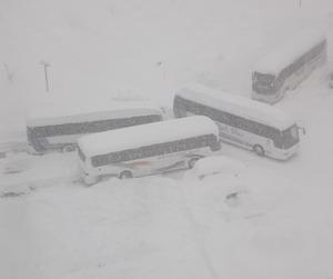 Snowbus